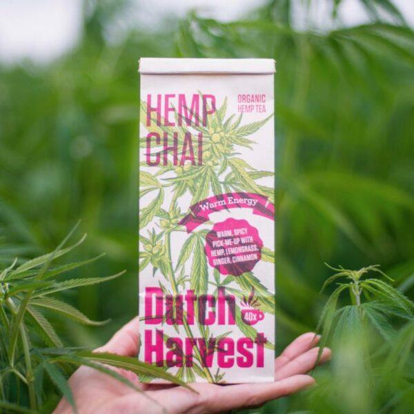 Hanftee Dutch Harvest Hanf und Chai - Hanffeld