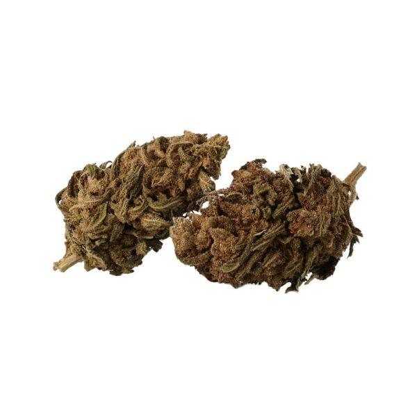 AK47 CBD Blüten - CBD Aromablüten - Sanaleo