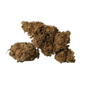 Black Domina CBD Blüten - CBD Aromablüten - Sanaleo
