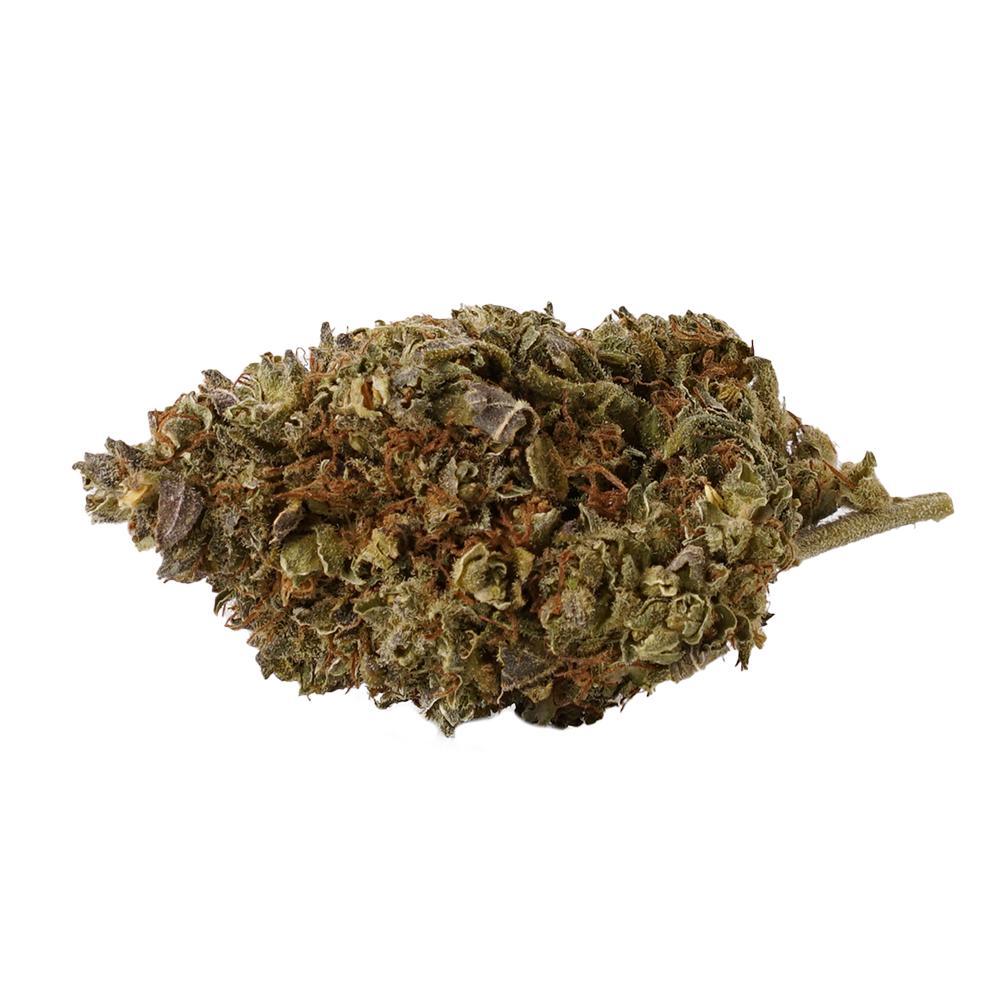 OG Kush CBD Blüten - CBD Aromablüten - Sanaleo