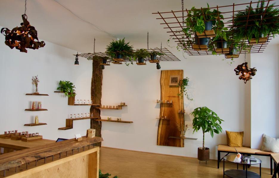 Franchise Partner Sanaleo CBD Shop Dresden