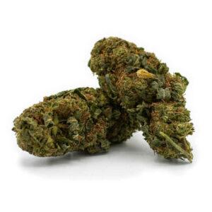 Gorilla Glue CBD Blüten - Aromablüten - Sanaleo CBD