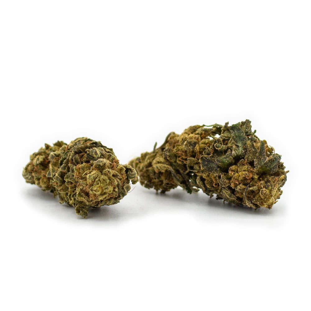 Jack Herer CBD Blüten - Aromablüten - Sanaleo CBD