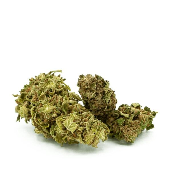 Butters Bud