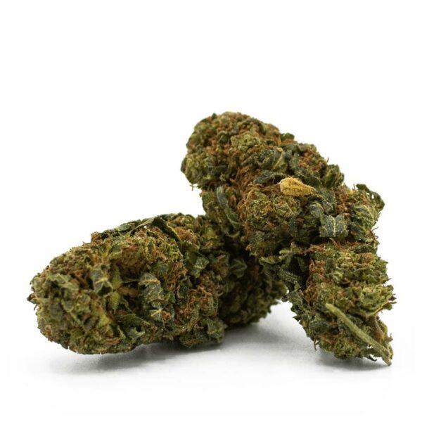 Gorilla Glue - CBD Blüten, CBD Aromablüten