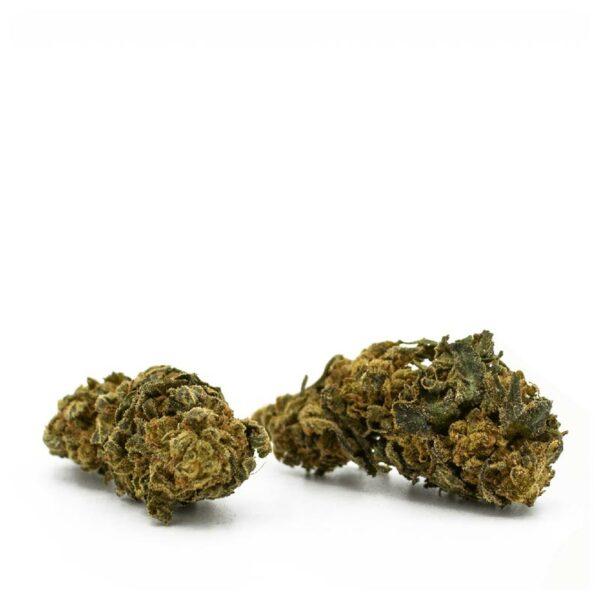 Jack Herer - CBD Blüten, CBD Aromablüten